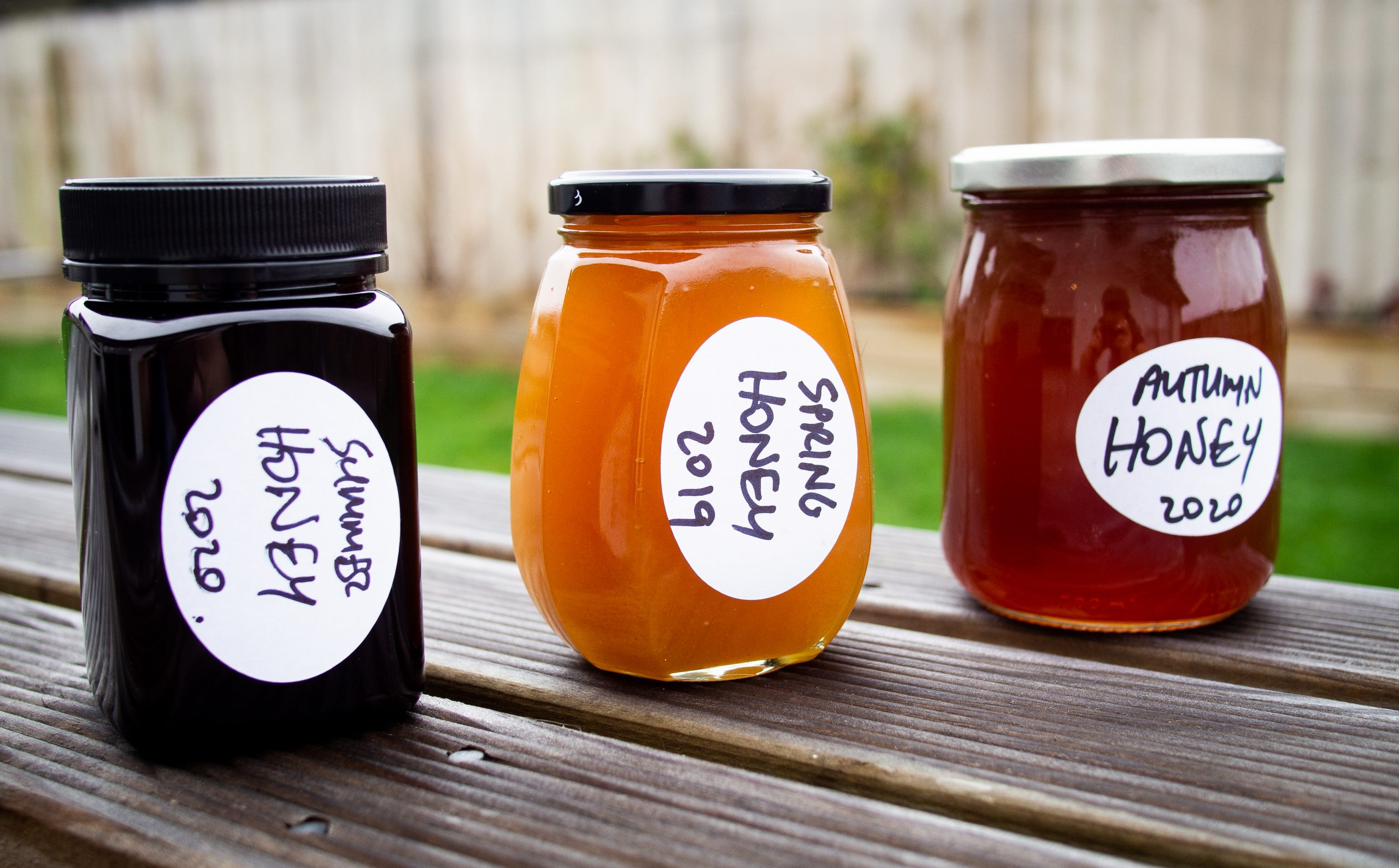 Abricot Ferme | Fresh-hop Apricot Sour